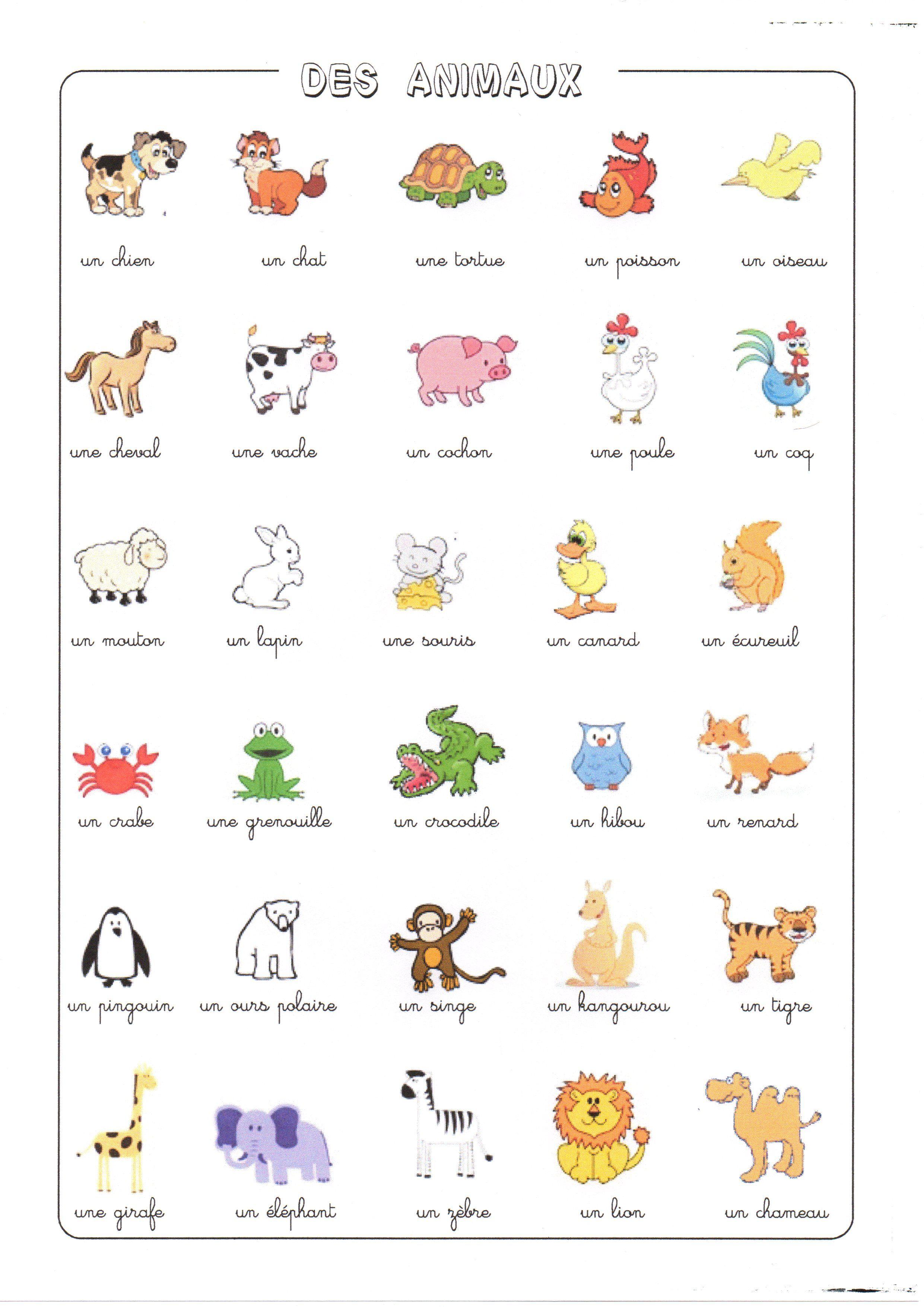 Fiche a imprimer - Photo animaux a imprimer ...
